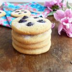 Blueberry Spelt Butter Cookies (from scratch)